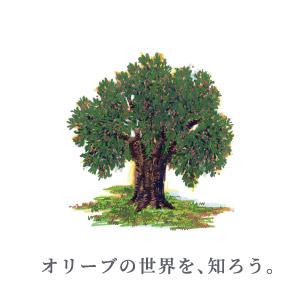 オリーブの世界